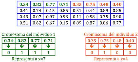 Algoritmo Genetico jarroba generacion individuos