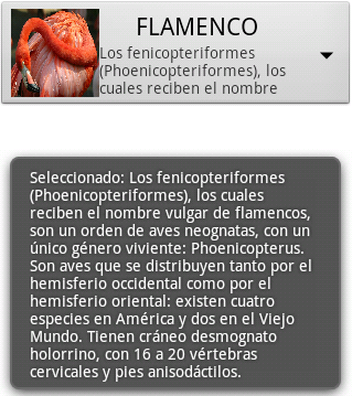 Spinner personalizado en Android 3 - www.jarroba.com