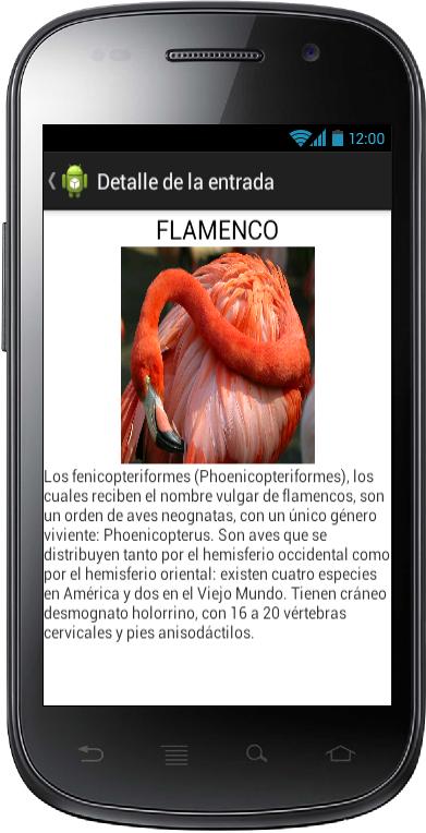 Ejemplo Movil Detalle Fragments Android - www.Jarroba.com