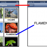 Collection View (Grids) en Objective-C -Ejemplo- (Video)
